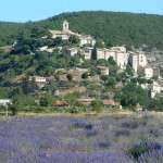 Banon, ses fromages et sa librarie ~ Books and cheese abound in Banon
